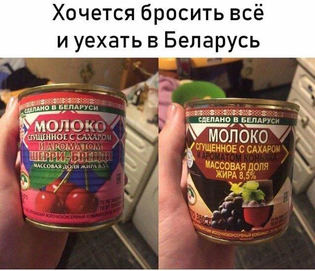 1_fotopodborka-sredy-39-foto-5.jpg