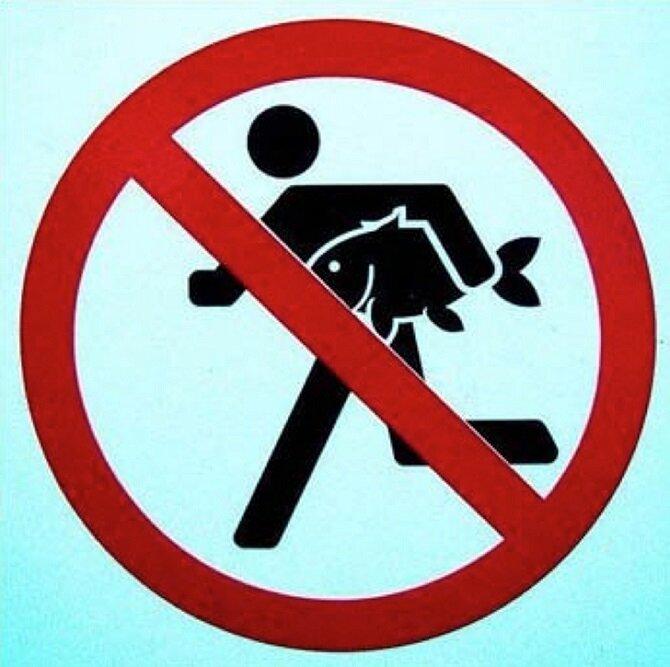 11 запретов, которые очень хочется нарушить