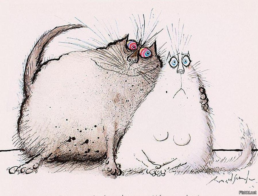 Миражанна лет, кошка смешной рисунок