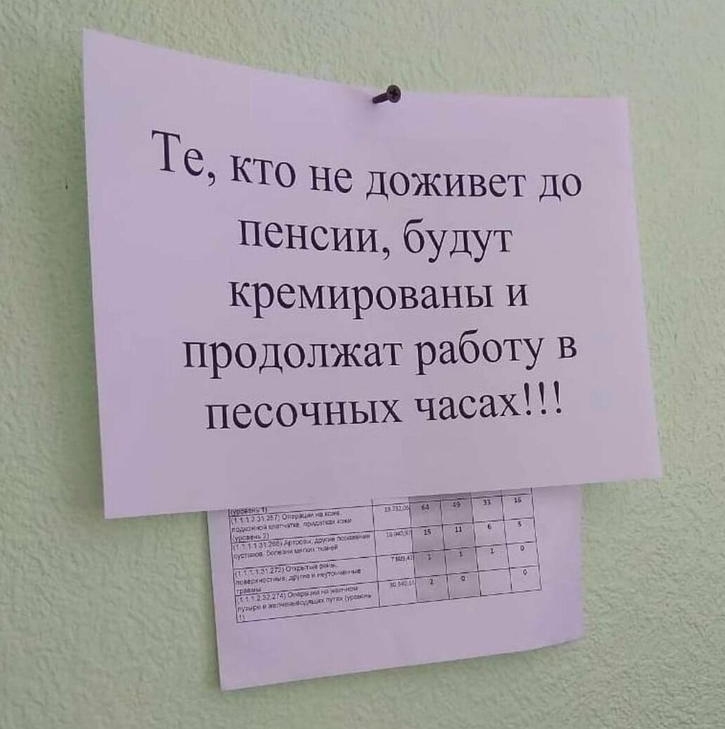 https://cdn.fishki.net/upload/post/2019/03/01/2894768/dintass07-52024261-388913875272107-8016406513728826725-n.jpg