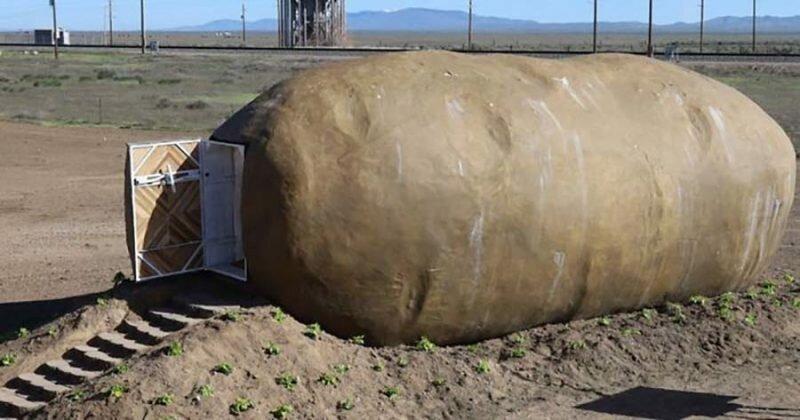 На Airbnb за $200 за ночь сдаётся жильё в форме громадной картофелины