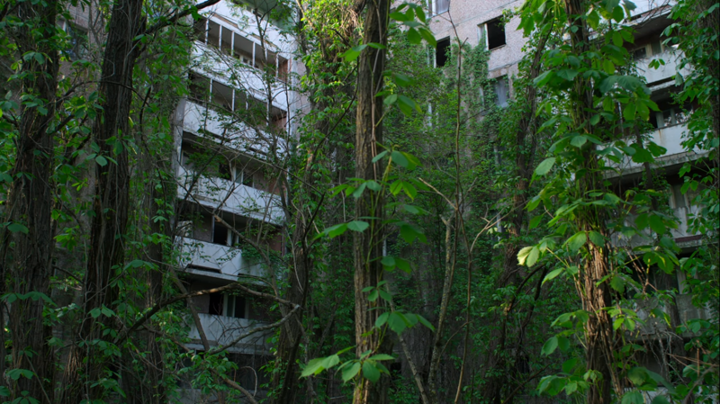 P.S. Припять, Чернобыль, аэс, годовщина, катастрофа, трагедия, цифры