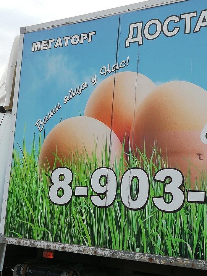 Пасха 2019: хвастаемся яйцами