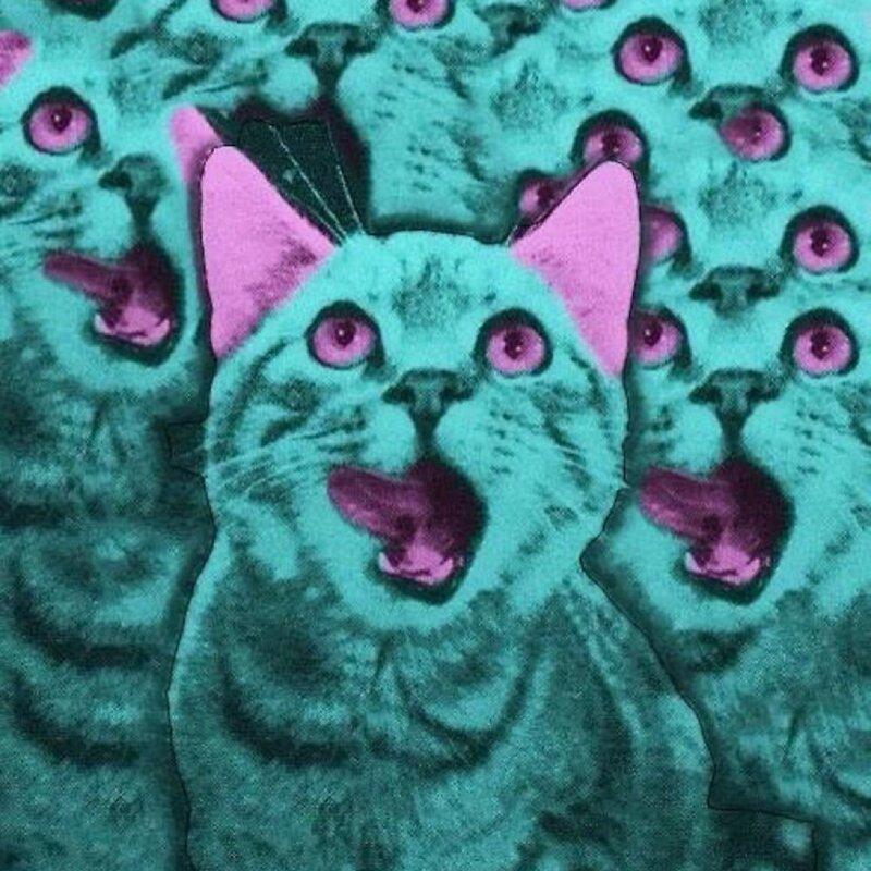 Кислотный кот картинки