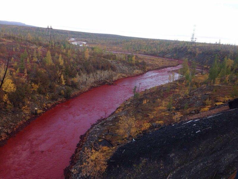 Красная река Далдыкан в Красноярском крае