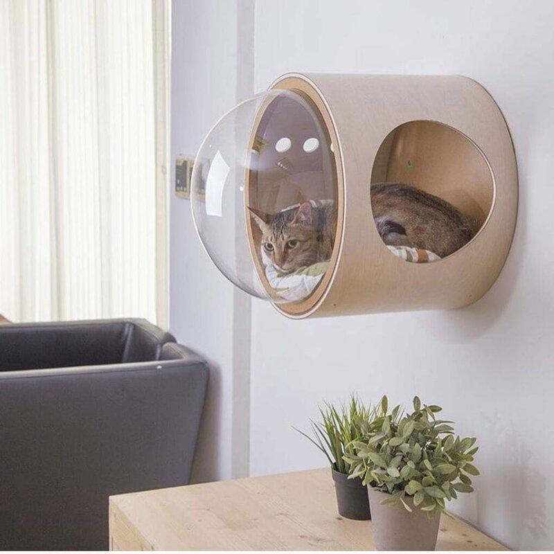 18. Космический корабль для кота от MYZOO дизайн, дизайнеры, идея, креатив, талант, фото