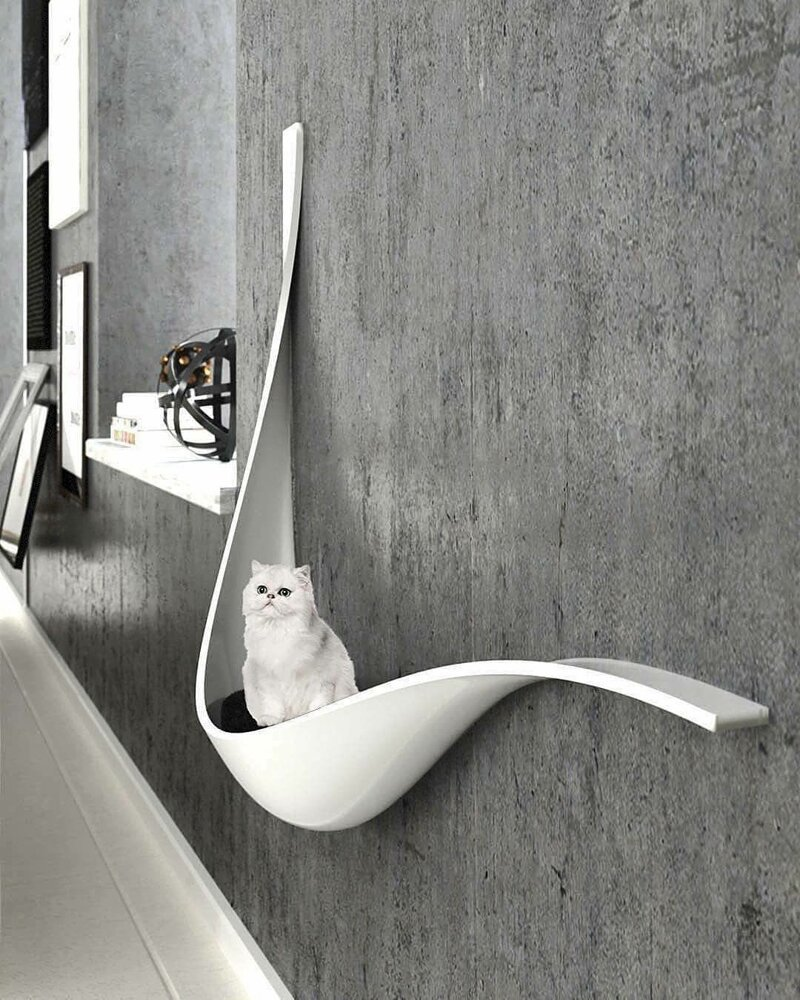 4. Животным тоже нужен стиль. Дизайн студии madeinma.ir дизайн, дизайнеры, идея, креатив, талант, фото
