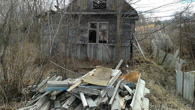 Чиновники предлагают изымать земельные участки за бытовой мусор и нескошенную траву ynews, Минэкономразвития, земля, отъем, пожарная безопасность, проект, собственность