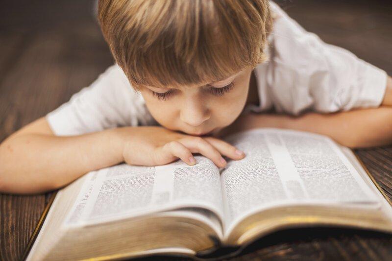 В РПЦ предложили на уроках литературы изучать тексты из Библии библия, изучение Библии, коран, рпц, уроки литературы, школа