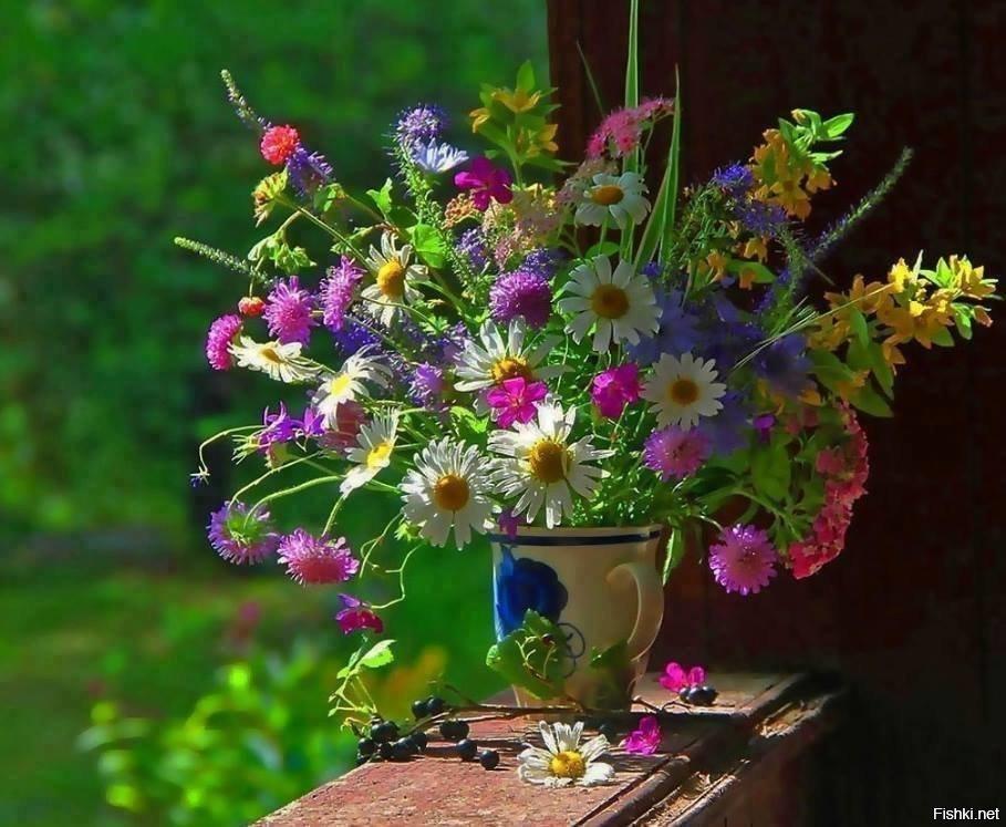 Картинки полевых цветов букет с добрым утром