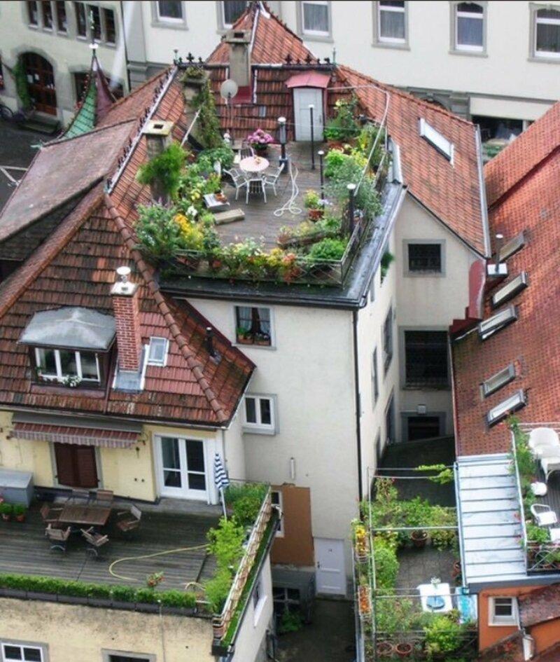 Вот такими должны быть крыши