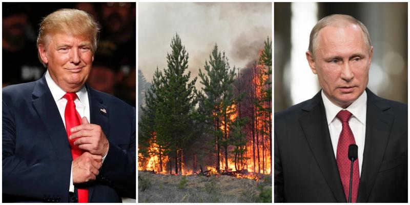 Дональд Трамп позвонил Путину и предложил помощь в тушении сибирских пожаров ynews, Трамп, звонок, пожары, помощь, путин, сибирь, сша