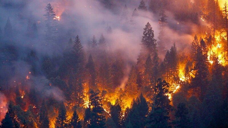 Леса Сибири будут полыхать до середины осени ynews, интересное, леса, новости, пожар, сибирь, фото