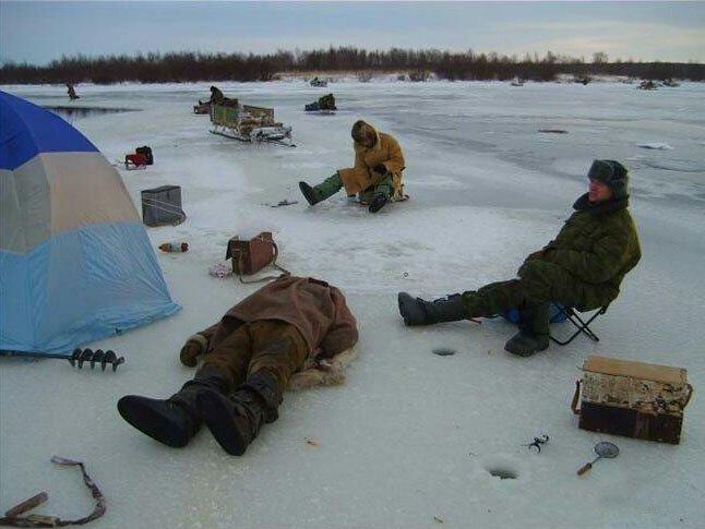 песчаного прикольное фото зимней рыбалки грибы крупа крупы