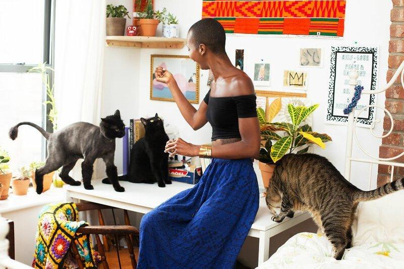 1. Девушка - Аиша, кошки - Алекс, Зена, Тигр