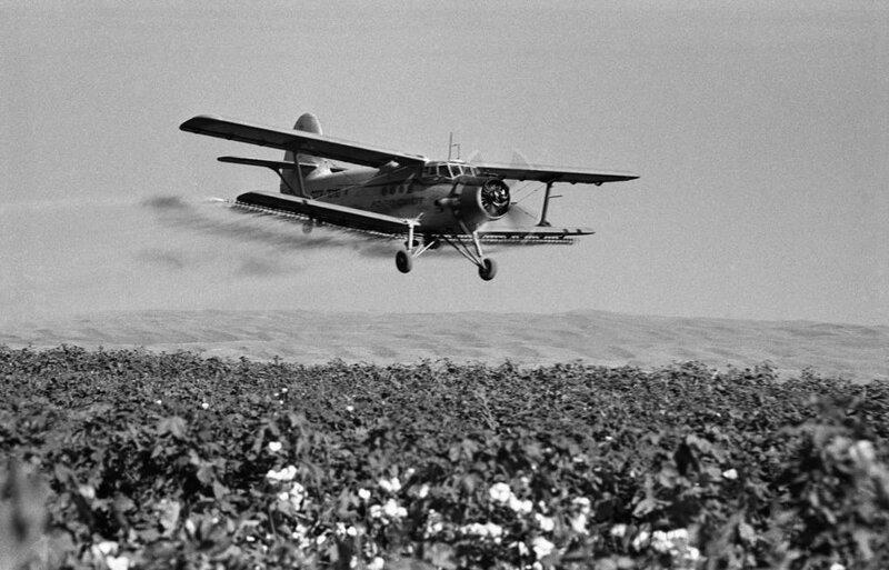 Легендарному «кукурузнику» найдут замену ynews, Ан-2, СССР, замена, кукурузник, разработка, самолет