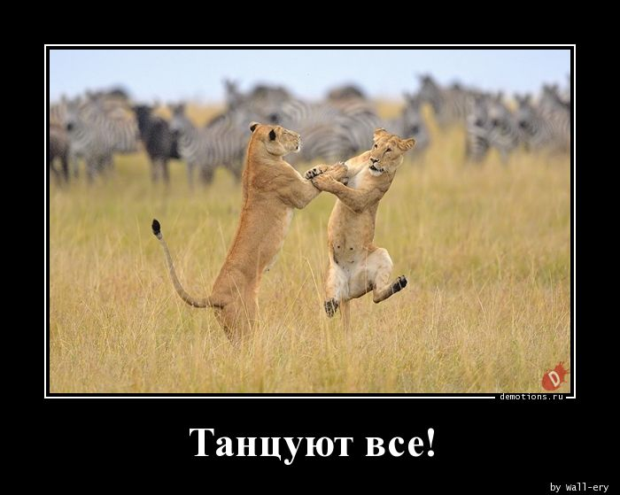 89161568301674-tancuyut-vse-demotions-ru