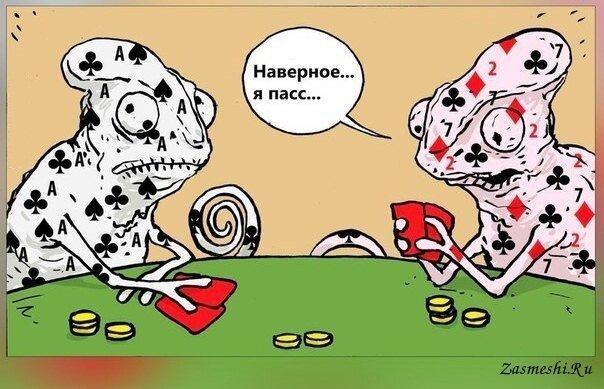 Животная карикатура
