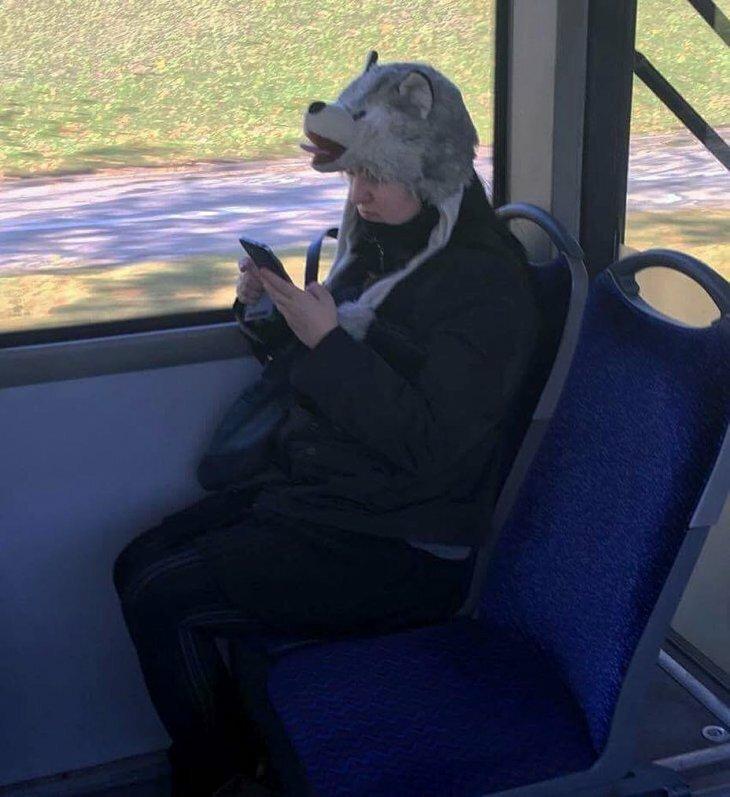 весенние смешные картинки пассажиров сомики способны отыскивать