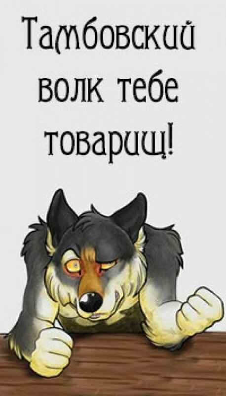 Тамбовский волк тебе товарищ картинка