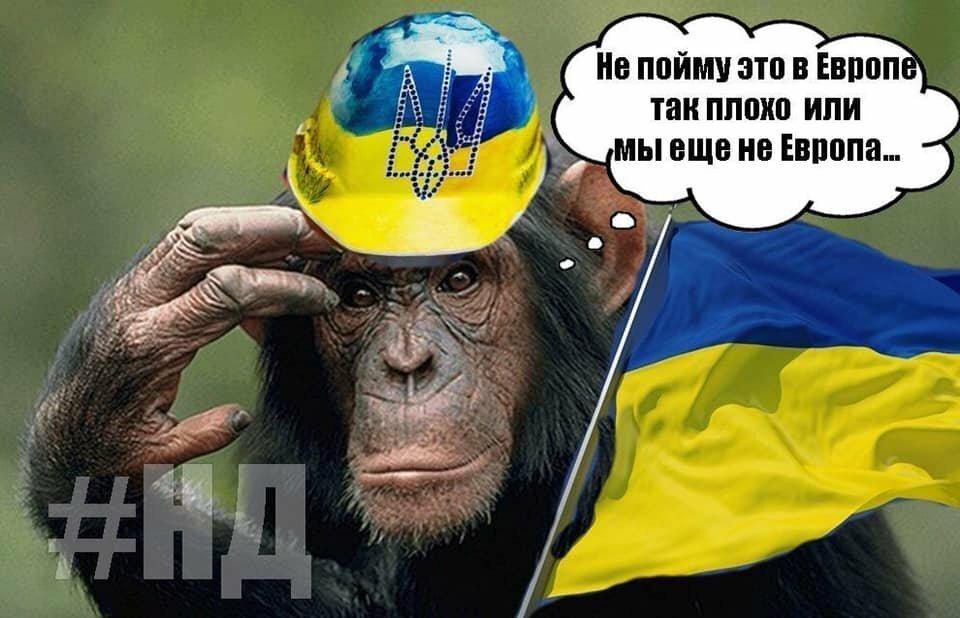 движение смешные картинки украина в ессентуках оливер автор десятков