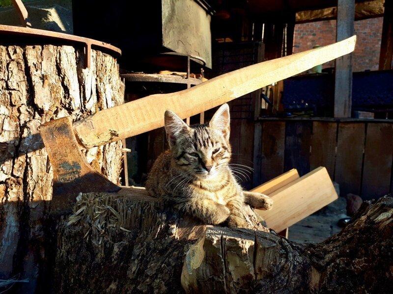 Деревенский работяга