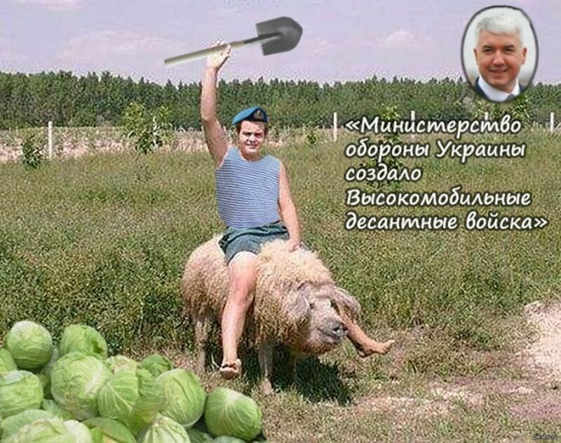 Картинки фото приколы про украину