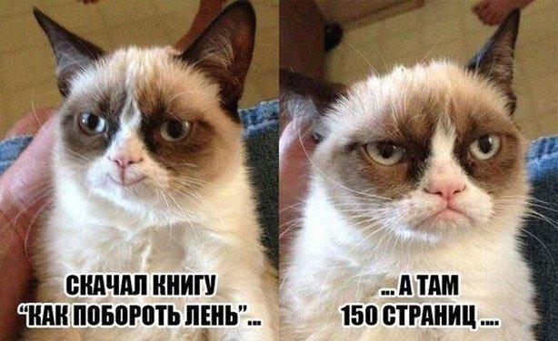 Новейшие демотиваторы. 378 ( 150 фото )   376x614