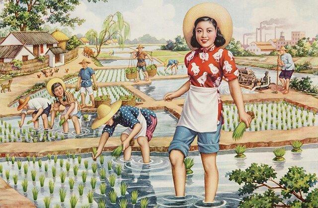 Рис: зарождение азиатской цивилизации