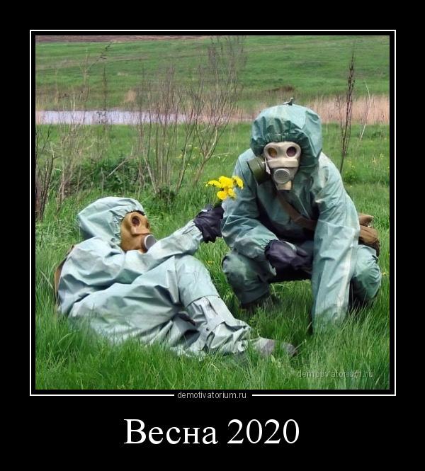 4518demotivatorium-ru-vesna-2020-186377.