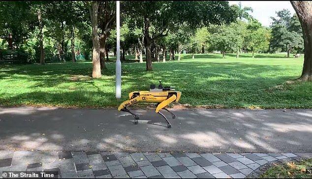 Робопёс контролирует людей в сингапурском парке