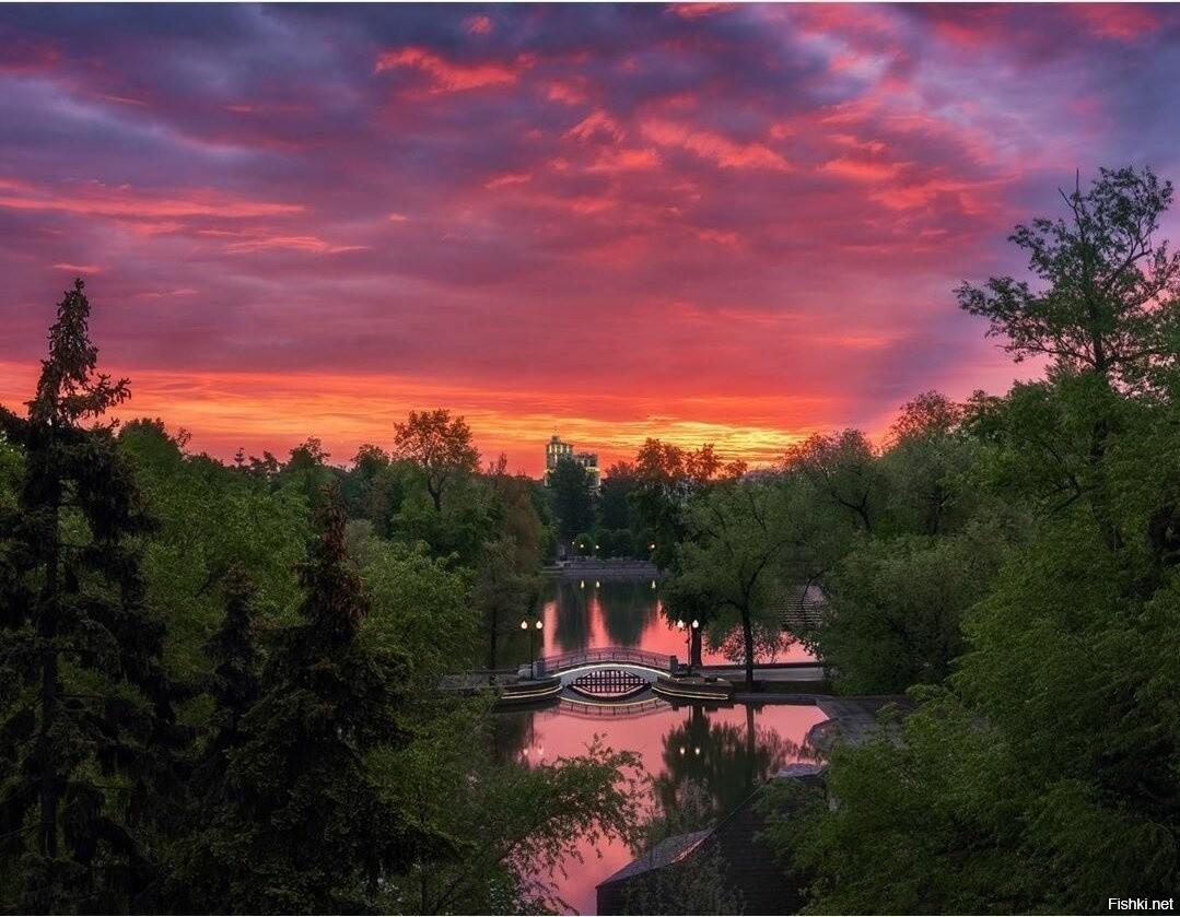 рассветы в парке горького фото соединить автоприцеп кузовом