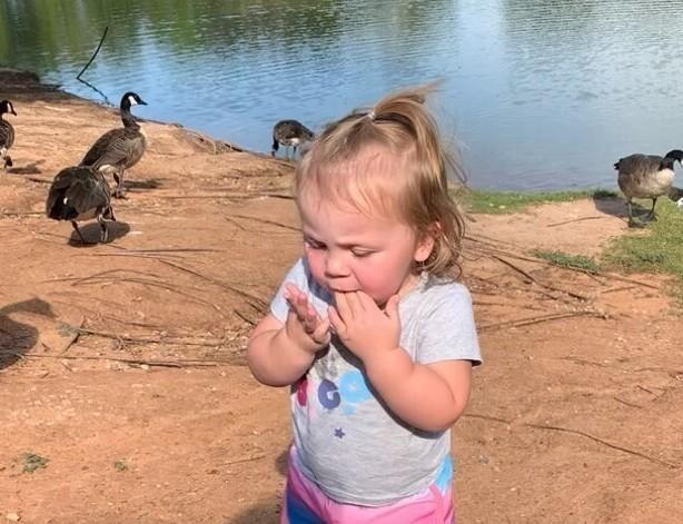 Взяли дочку в парк, чтобы покормить уток, но что-то пошло не так