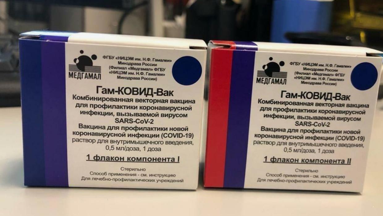 Совет атаманов России заявил, что дистанционные термометры способны стирать память