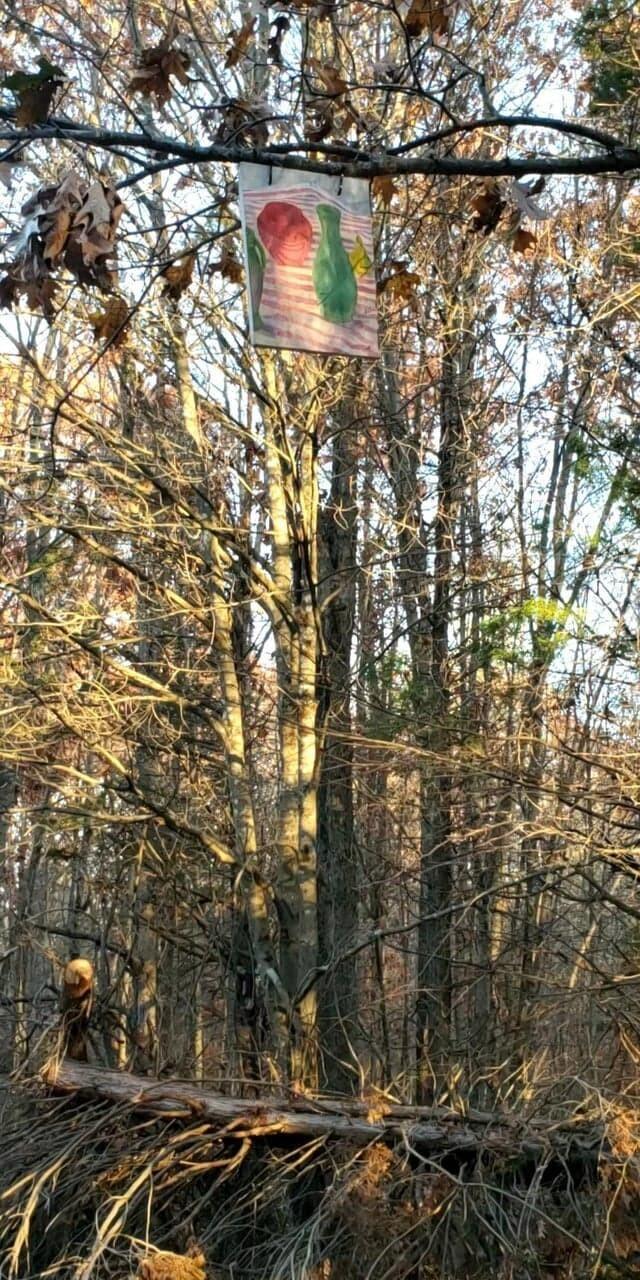 7. Ещё одна рандомная картина посреди леса