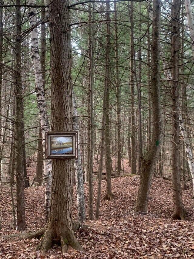 1. Случайная картина в лесу
