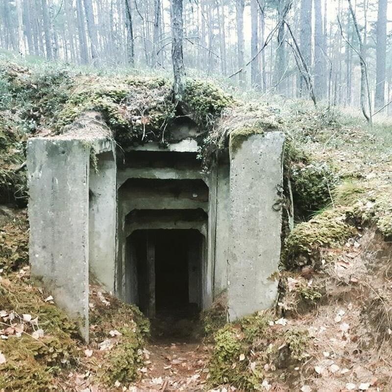 15. «Нашли в лесу старый советский бункер»
