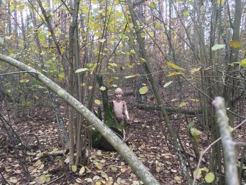 5. Кто-то оставил его глубоко в лесу