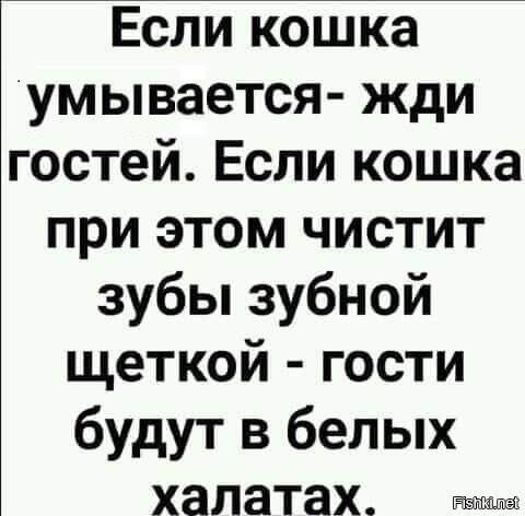 e6d6bfb0831f596a89992b5c579244d0.jpg