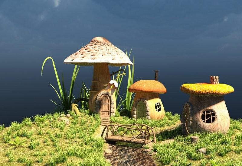 10 самых интересных фактов о грибах