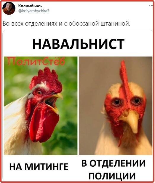 Политические картинки - 728