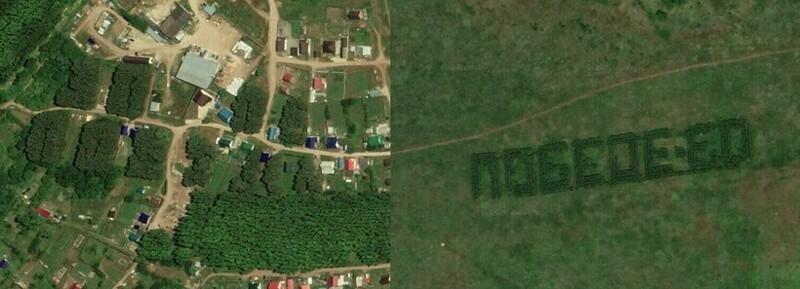 КаквСССР создавали леса вформе слов