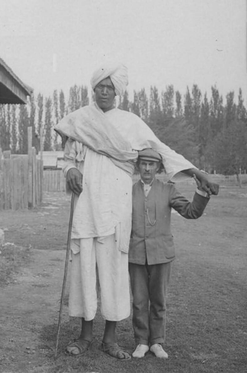 Ктоонитакие - кашмирские гиганты?